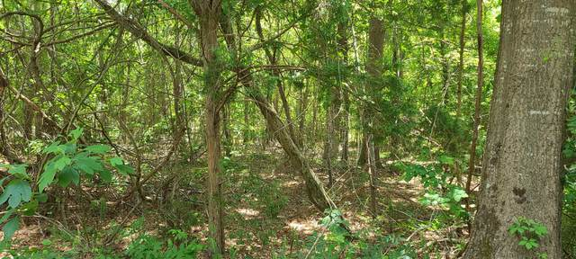 Tbd Barnes Avenue, Vass, NC 28394 (MLS #206039) :: Towering Pines Real Estate