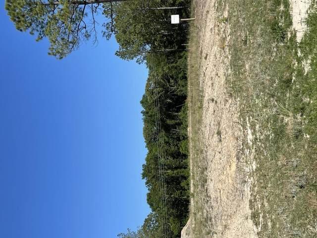 121 Payton, Rockingham, NC 28379 (MLS #206177) :: Towering Pines Real Estate