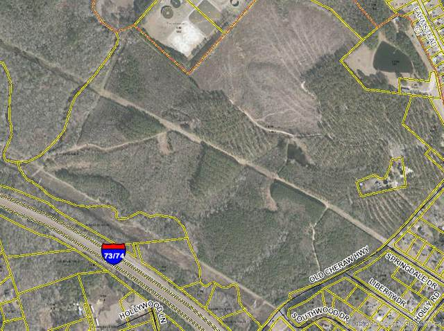 Tbd Old Cheraw Highway, Rockingham, NC 28379 (MLS #206453) :: Pinnock Real Estate & Relocation Services, Inc.
