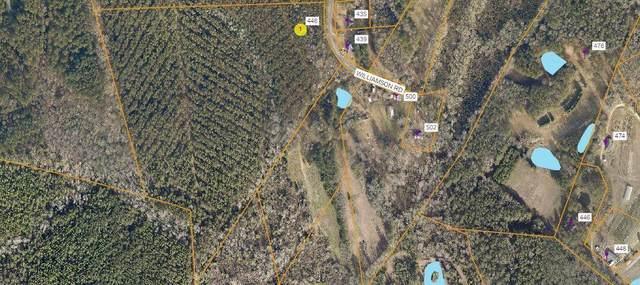 446 Williamson Road, Carthage, NC 28327 (MLS #206509) :: Pinnock Real Estate & Relocation Services, Inc.