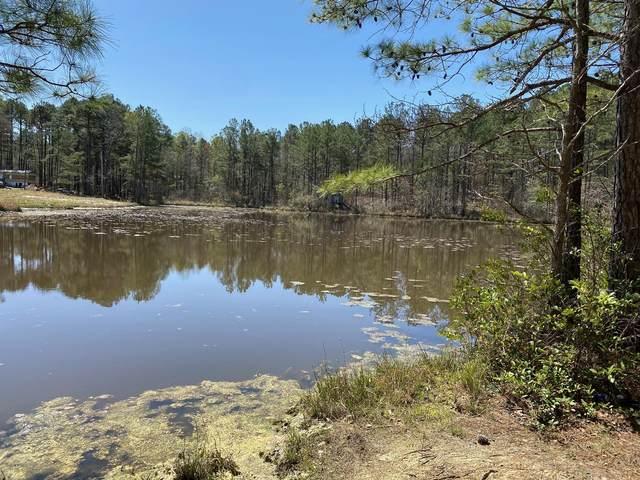 289 Bret Road, Cameron, NC 28326 (MLS #206636) :: Towering Pines Real Estate