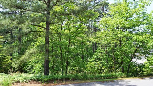 17 St. Georges Drive, Pinehurst, NC 28374 (MLS #206651) :: Pinnock Real Estate & Relocation Services, Inc.