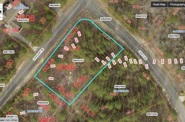 195 Longleaf Drive, West End, NC 27376 (MLS #206733) :: Pinnock Real Estate & Relocation Services, Inc.