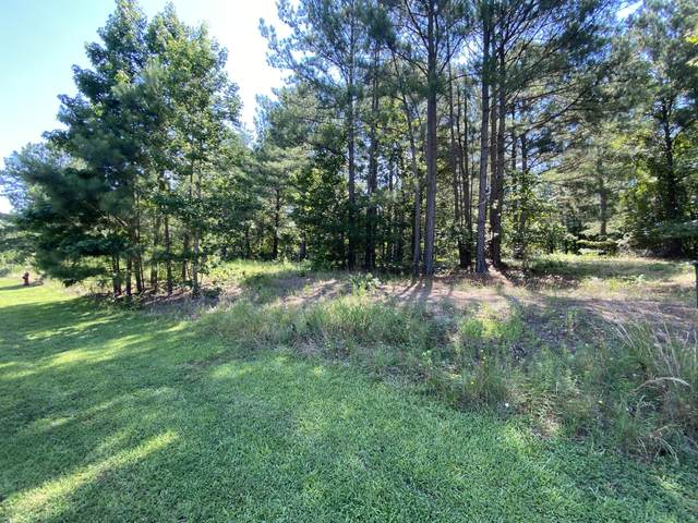 145 Jonathons Drive, West End, NC 27376 (MLS #206856) :: EXIT Realty Preferred