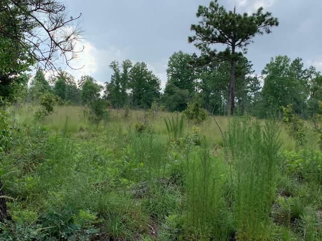Tbd Foxfire Road #3, Jackson Springs, NC 27281 (MLS #207233) :: Pines Sotheby's International Realty
