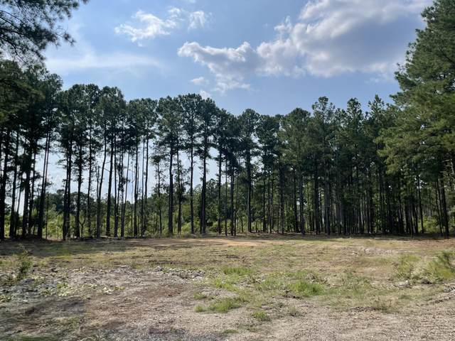 Tbd Turning Leaf Way, Aberdeen, NC 28315 (MLS #207483) :: Pinnock Real Estate & Relocation Services, Inc.