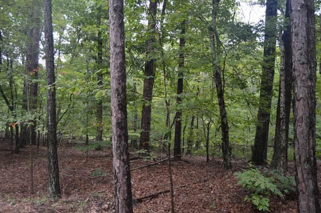 Tbd Winding Creek Drive, Carthage, NC 28327 (MLS #207692) :: Pines Sotheby's International Realty