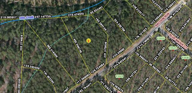 Tbd Racoon Run, Wagram, NC 28396 (MLS #207768) :: Pinnock Real Estate & Relocation Services, Inc.