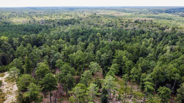 491 Grande Pines Vista, Jackson Springs, NC 27281 (MLS #207904) :: Pines Sotheby's International Realty