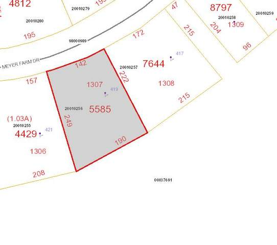 419 Meyer Farm Drive, Pinehurst, NC 28374 (MLS #207962) :: Pinnock Real Estate & Relocation Services, Inc.