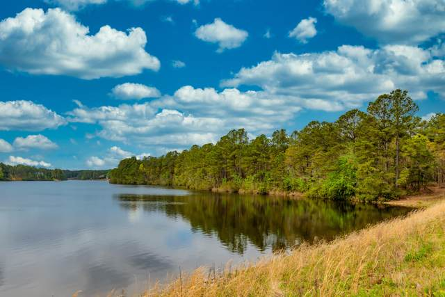 Tbd Racoon Run, Wagram, NC 28396 (MLS #208066) :: Pinnock Real Estate & Relocation Services, Inc.