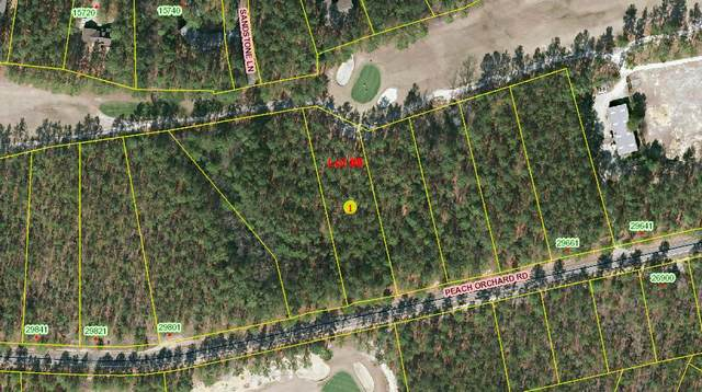 Lot 8 Peach Orchard Road, Wagram, NC 28396 (MLS #208084) :: Pinnock Real Estate & Relocation Services, Inc.