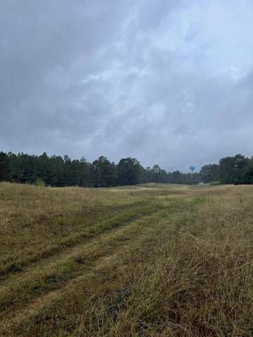 576 Bald Eagle Drive, Vass, NC 28394 (MLS #208153) :: On Point Realty