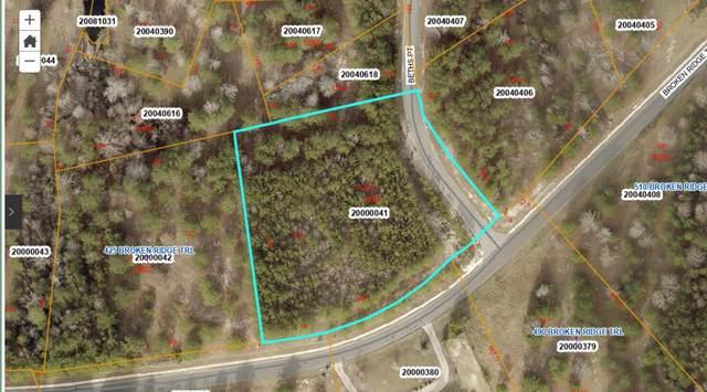 455 Broken Ridge Trail, West End, NC 27376 (MLS #208312) :: Pinnock Real Estate & Relocation Services, Inc.