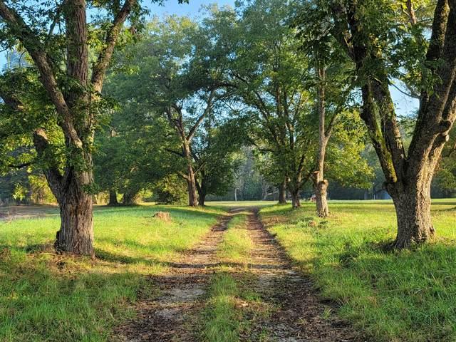 Tbd Roberdel School Road, Rockingham, NC 28379 (MLS #208439) :: EXIT Realty Preferred
