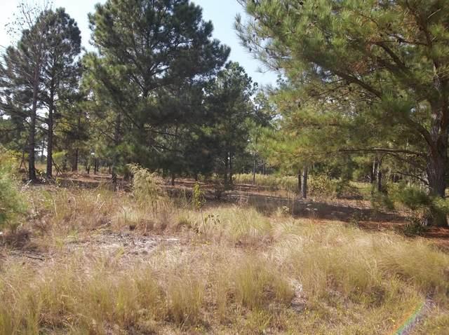 0 Windblow Road, Jackson Springs, NC 27281 (MLS #208459) :: Pines Sotheby's International Realty