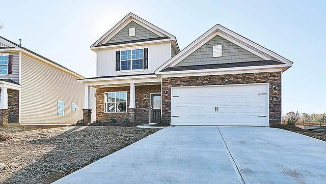 513 Little Rock Court Lane, Carthage, NC 28327 (MLS #208488) :: Pinnock Real Estate & Relocation Services, Inc.