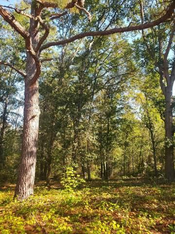 Tbd Abrams Drive, Rockingham, NC 28379 (MLS #208534) :: Pines Sotheby's International Realty