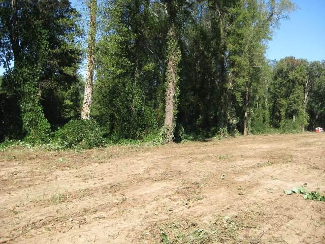 349 Cranes Creek Road, Cameron, NC 28326 (MLS #208578) :: Pines Sotheby's International Realty