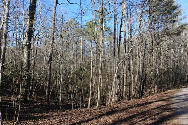 Lot 67 Palomino Dr, Carthage, NC 28327 (MLS #173876) :: Pinnock Real Estate & Relocation Services, Inc.