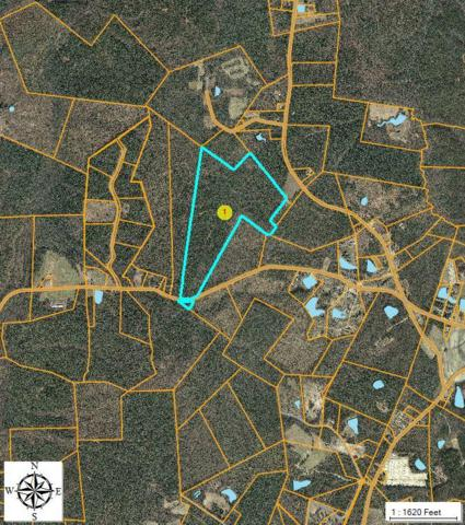 Tbd Dowd Road, Carthage, NC 28327 (MLS #178124) :: Pinnock Real Estate & Relocation Services, Inc.