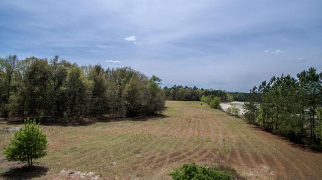 225 Strother Road, Aberdeen, NC 28315 (MLS #180952) :: Weichert, Realtors - Town & Country