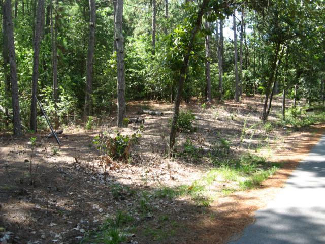 963 Sandavis Road, Southern Pines, NC 28387 (MLS #187577) :: Weichert, Realtors - Town & Country