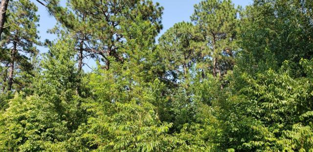25 Beckett Ridge, Pinehurst, NC 28374 (MLS #189233) :: Weichert, Realtors - Town & Country