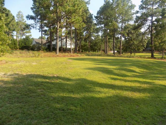 119 Clay Circle Circle, West End, NC 27376 (MLS #190010) :: Weichert, Realtors - Town & Country
