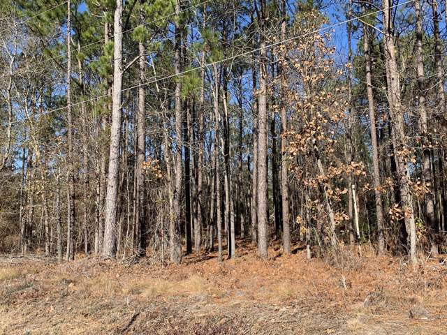 Tbd Willow Lane, Hamlet, NC 28345 (MLS #198076) :: Pinnock Real Estate & Relocation Services, Inc.