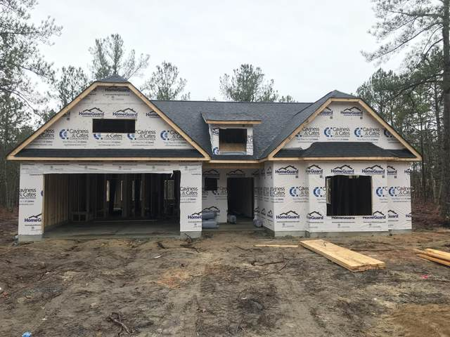 514 Pond Pine Lane, Carthage, NC 28327 (MLS #198628) :: Pinnock Real Estate & Relocation Services, Inc.