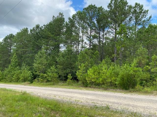 363 Summer Creek Trail, Vass, NC 28394 (MLS #201055) :: Pines Sotheby's International Realty