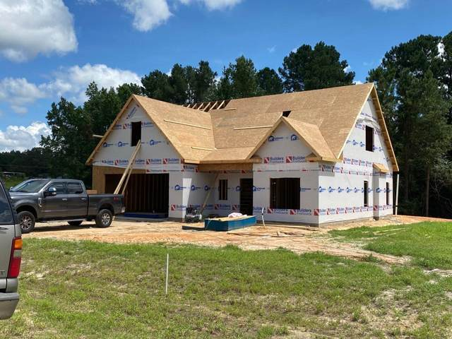 841 Warwick Lane, Carthage, NC 28327 (MLS #201510) :: Pinnock Real Estate & Relocation Services, Inc.