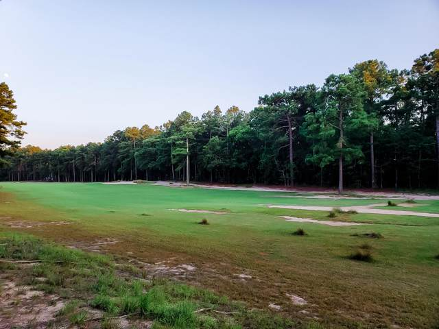 Lot 10 Old Orchard Court, Wagram, NC 28396 (MLS #201621) :: Pinnock Real Estate & Relocation Services, Inc.