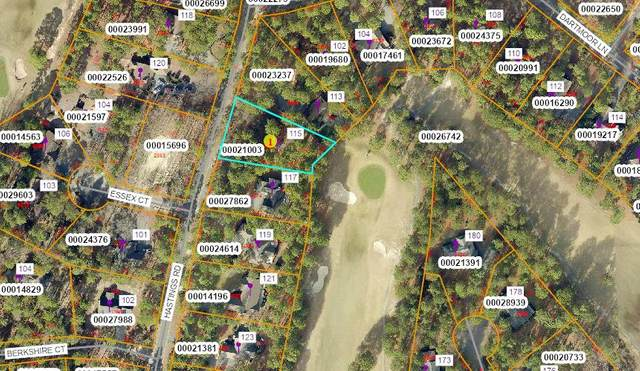 115 Hastings Road, West End, NC 27376 (MLS #202894) :: Towering Pines Real Estate
