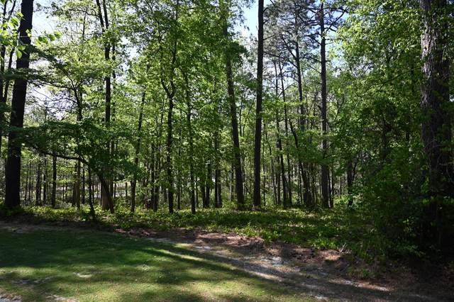 66 Mcmichael Drive, Pinehurst, NC 28374 (MLS #205352) :: Towering Pines Real Estate