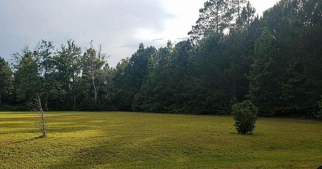 Tbd Old Coach Lane, Marston, NC 28363 (MLS #207038) :: EXIT Realty Preferred