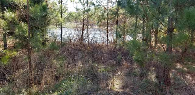 Lot #122 Western Trail, Carthage, NC 28327 (MLS #208107) :: Pinnock Real Estate & Relocation Services, Inc.