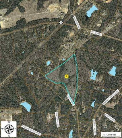 Tbd Oldham Road, West End, NC 27376 (MLS #160374) :: Weichert, Realtors - Town & Country