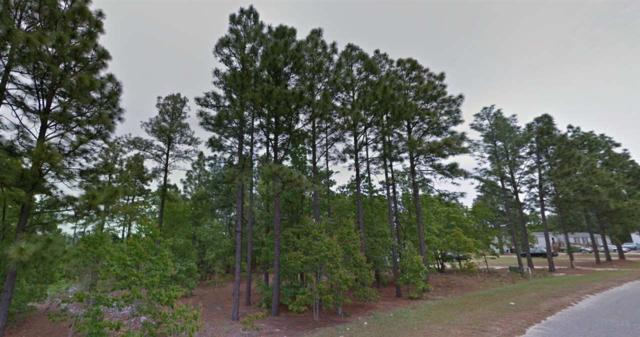 111 Devos Drive, Rockingham, NC 28379 (MLS #166626) :: Pinnock Real Estate & Relocation Services, Inc.