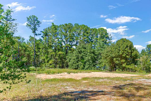 199 Snoozing Pines Lane, Aberdeen, NC 28315 (MLS #207967) :: Pinnock Real Estate & Relocation Services, Inc.