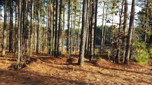 91 Anderson Lake Drive, Spring Lake, NC 28390 (MLS #173295) :: Weichert, Realtors - Town & Country