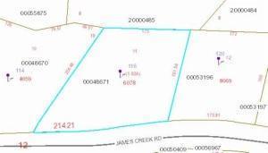 116 James Creek Road, Southern Pines, NC 28387 (MLS #173844) :: Weichert, Realtors - Town & Country