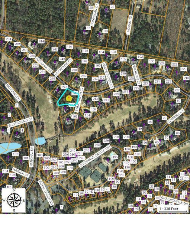 245 National Drive, Pinehurst, NC 28374 (MLS #182686) :: Pinnock Real Estate & Relocation Services, Inc.