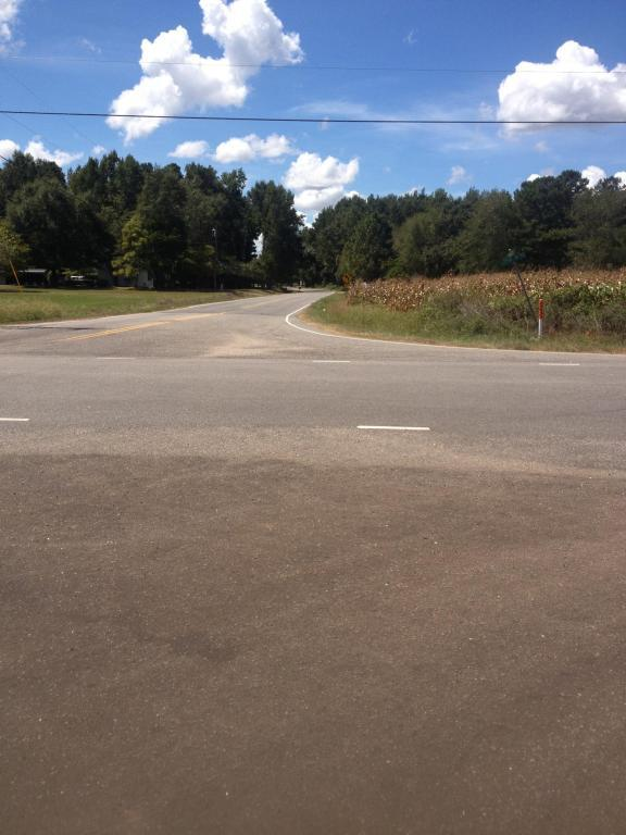 8880 Us Hwy 501 Bypass, Laurinburg, NC 28352 (MLS #183240) :: Weichert, Realtors - Town & Country