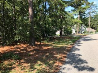 5 E Lake View Drive, Pinehurst, NC 28374 (MLS #183805) :: Pinnock Real Estate & Relocation Services, Inc.