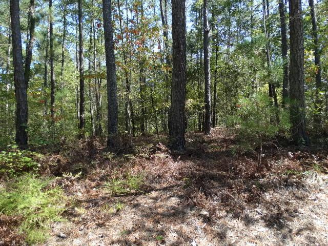 40 Sandstone, Wagram, NC 28396 (MLS #184981) :: Pinnock Real Estate & Relocation Services, Inc.