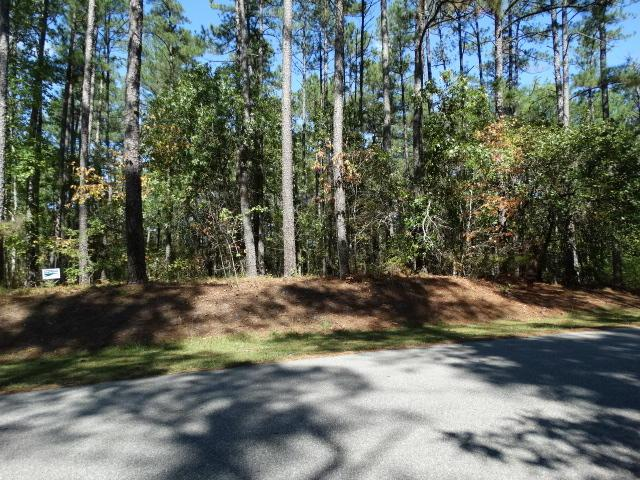 41 Sandstone, Wagram, NC 28396 (MLS #184982) :: Pinnock Real Estate & Relocation Services, Inc.