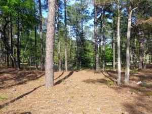 40 Pinewild Drive, Pinehurst, NC 28374 (MLS #185497) :: Pinnock Real Estate & Relocation Services, Inc.