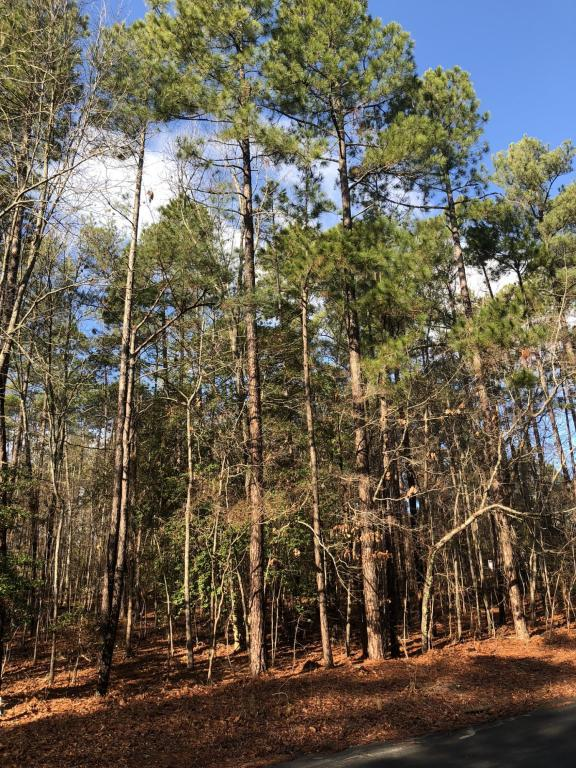 460 E Hedgelawn Way, Southern Pines, NC 28387 (MLS #186395) :: Weichert, Realtors - Town & Country